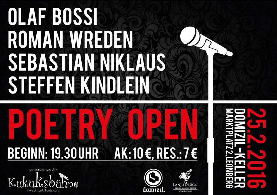 Singersongwriter Sebastian Niklaus Aus Karlsruhe Heute In Leonberg